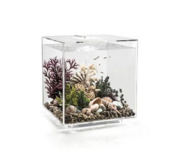 Biorb Cube Aquarium 30 ltr Clear (Mcr Light)